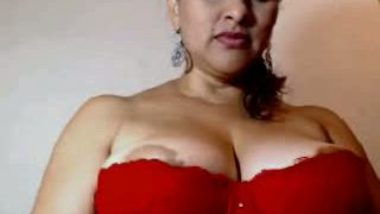 Big boobs aunty displays breasts & ass in cam show