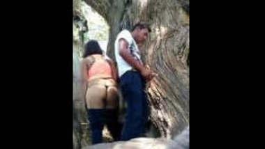 Desi Couple Hidden sex in park